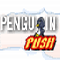 Penguin Push