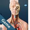 Anatomicus Anatomy Game