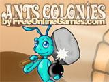 Ants Colonies