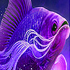 Big purple fish slide puz…