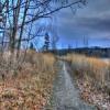 Cherokee Marsh Jigsaw