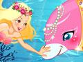 Dolphin & the Mermaid