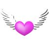 Immortal love. 5 Differen…
