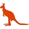 Kangaroo Runner