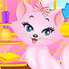 Lovely Princess Cat