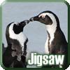 Penguins Jigsaw Puzzle