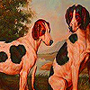 Playful  farm dogs slide …