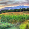 Wyalusing State Park Jigs…