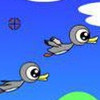 shoot duck